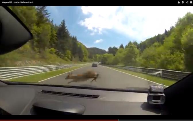Bambi is niet welkom op Nordschleife