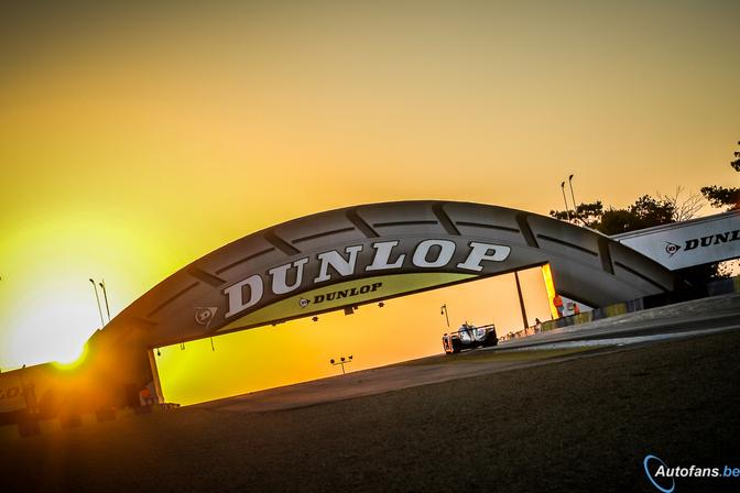 Le-Mans-2014-pictures