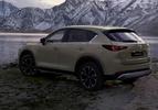Mazda CX-5 facelift 2022 bruin achter