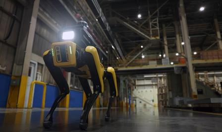 Kia Hyundai Robot Dog